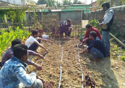 Agri Training_Cultivation